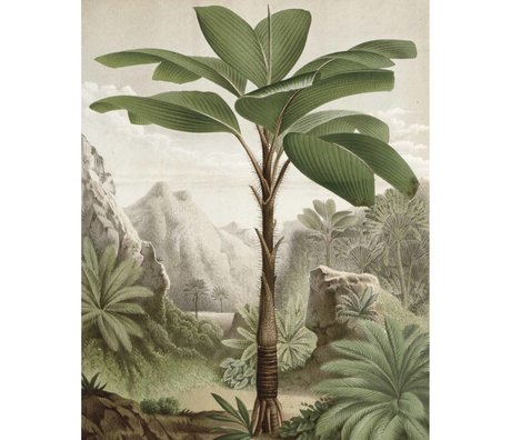 KEK Amsterdam Behangpaneel Banana Tree groen vliesbehang 142,5x180cm