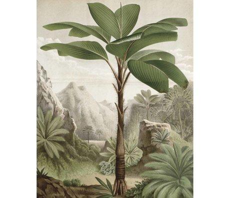 KEK Amsterdam Panneau papier peint papier peint intissé vert banane arbre 142,5x180cm