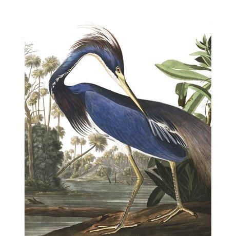 KEK Amsterdam Panneau papier peint papier peint intissé multicolore Louisiana Heron 142,5x180cm