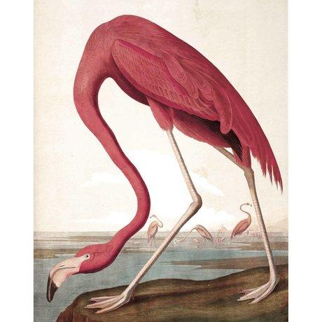 KEK Amsterdam Behangpaneel Flamingo multicolour vliesbehang 142,5x180cm