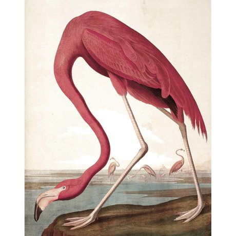 KEK Amsterdam Tapetenpaneel Flamingo mehrfarbig gewebte Tapete 142,5x180cm