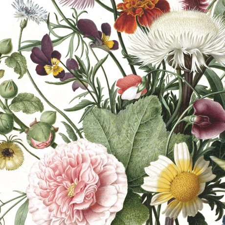 KEK Amsterdam Tapetenbahn Wild Flowers mehrfarbige Vliestapete 142,5x180cm