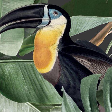 KEK Amsterdam Papier peint Botanical Birds papier peint non tissé noir 97,4x280cm (2 feuilles)