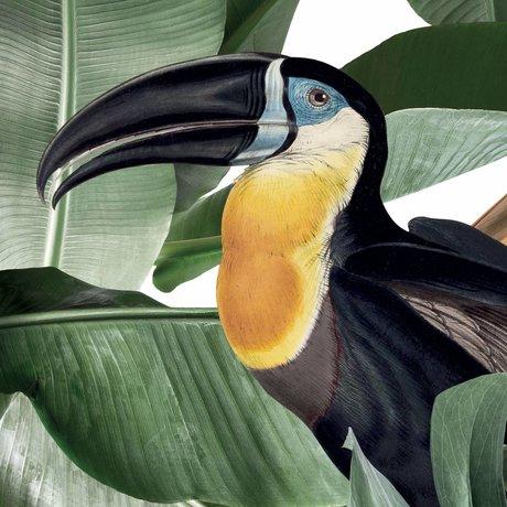 KEK Amsterdam Papier peint Botanical Birds papier peint intissé non tissé blanc 97,4x280cm (2 feuilles)