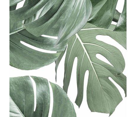 KEK Amsterdam Papier peint intissé Monstera blanc 97.4x280cm (2 feuilles)