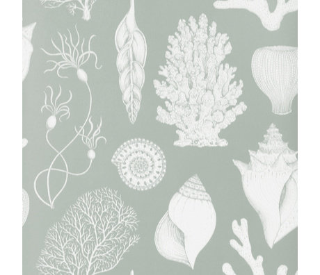 Ferm Living Wallpaper Katie Scott Shells Aqua blue 10x0,53m