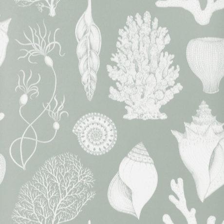 Ferm Living Papier peint Katie Scott Shells Bleu Aqua 10x0,53m