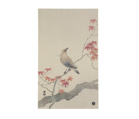 BePureHome Poster Waxwing L paper 25x35cm