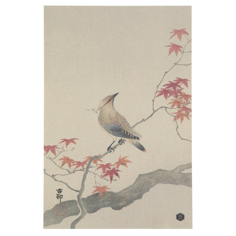 BePureHome Poster Waxwing XL paper 32x47cm