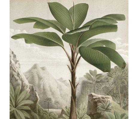 KEK Amsterdam Panneau de papier peint Banana Tree papier peint intissé vert 142.5x180cm
