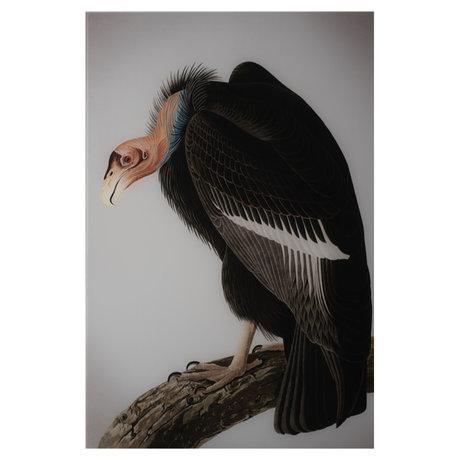 wonenmetlef Painting Vulture multicolour plexiglass 30x40cm