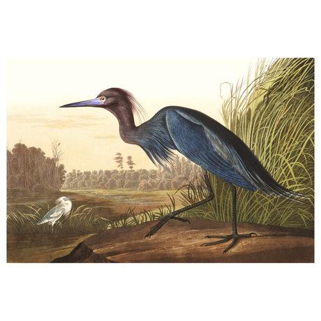 wonenmetlef Painting Blue Crane multicolour plexiglass 30x40cm
