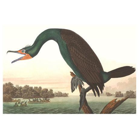 wonenmetlef Painting Cormorant multicolour plexiglass 30x40cm