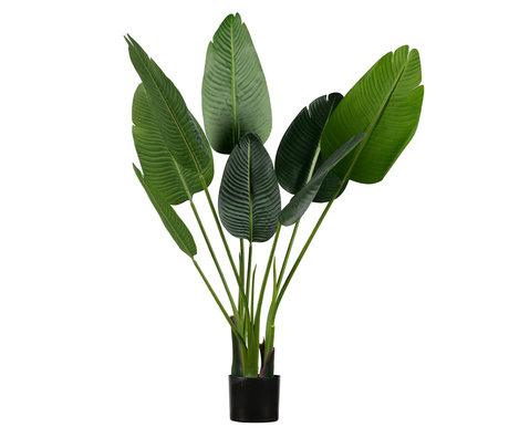 LEF collections Kunstplant Strelitzia groen kunststof 61x50x108cm