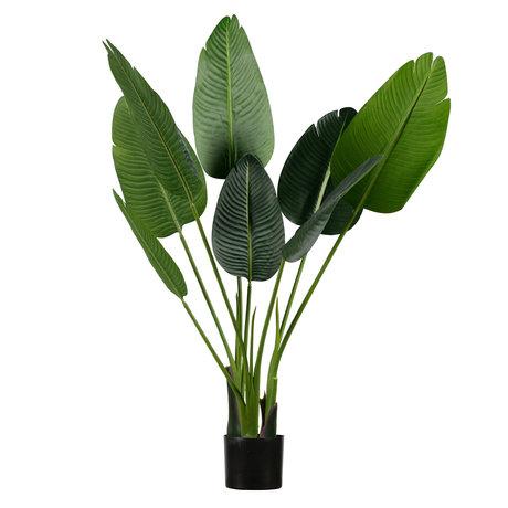 LEF collections Kunstpflanze Strelitzia grün synthetisch 61x50x108cm