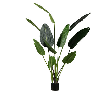 LEF collections Plante artificielle Strelitzia synthétique verte 96x63x164cm