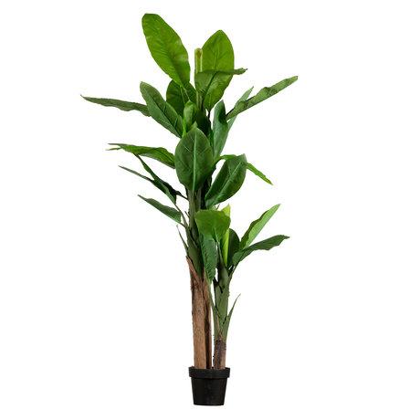LEF collections Plante artificielle banane en plastique vert 95x80x195cm