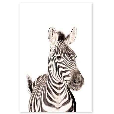 Groovy Magnets magneetsticker zebra zelfklevend vinyl met ijzerdeeltjes 60x90cm