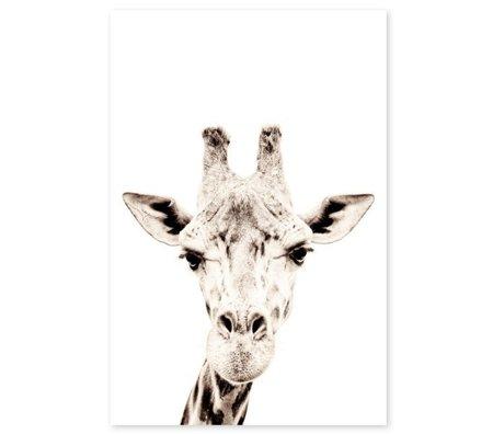 Groovy Magnets magneetsticker giraffe zelfklevend vinyl met ijzerdeeltjes 60x90cm