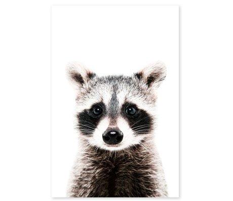 Groovy Magnets magneetsticker raccoon zelfklevend vinyl met ijzerdeeltjes 60x90cm
