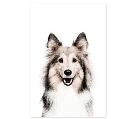 Groovy Magnets Magnetaufkleber Hund selbstklebendes Vinyl mit Eisenpartikeln 60x90cm