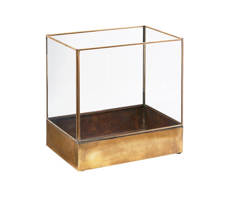 Housedoctor Display box Plant brass gold metal glass L 30x21x30cm