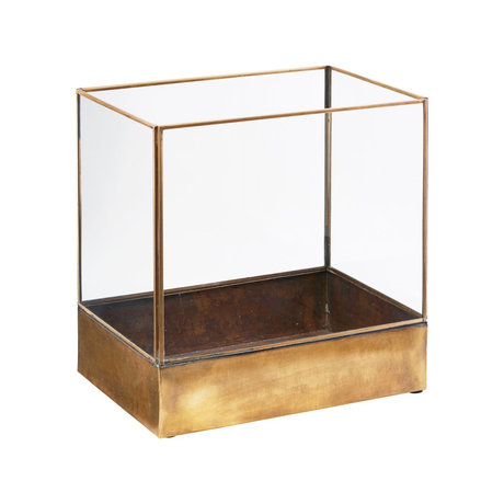 Housedoctor Schaukasten Pflanze Messing Gold Metall Glas L 30x21x30cm