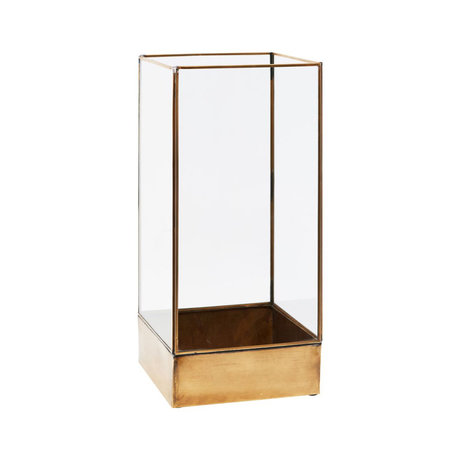 Housedoctor Schaukasten Pflanze Messing Gold Metall Glas S 21x21x45 cm