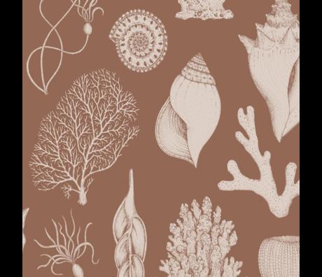 Ferm Living Wallpaper Katie Scott Shells toffee brown non woven non-woven wallpaper 53x1000cm