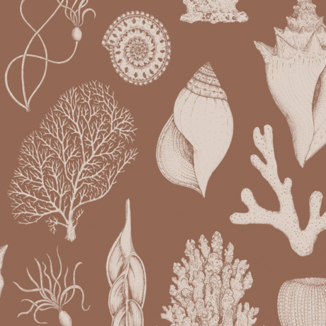 Ferm Living Papier peint intissé intissé Katie Scott Shells marron caramel 53x1000cm