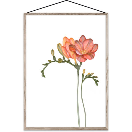 Paper Collective Poster Forever Flower 02 papier multicolore A4 21x30cm