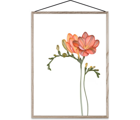 Paper Collective Poster Forever Flower 02 papier multicolore A3 30x42cm