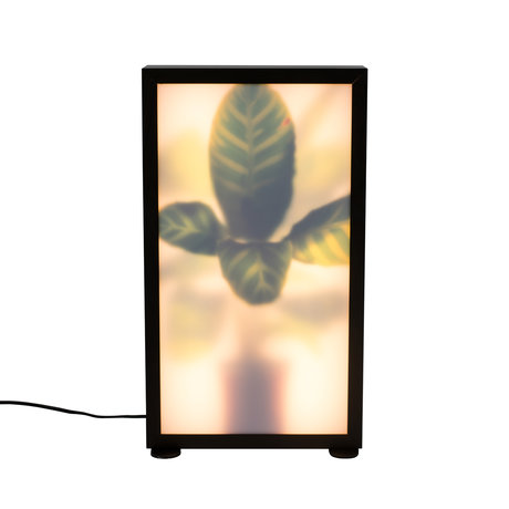 Zuiver Vloerlamp Grow M Zebraplant 29x8x51cm