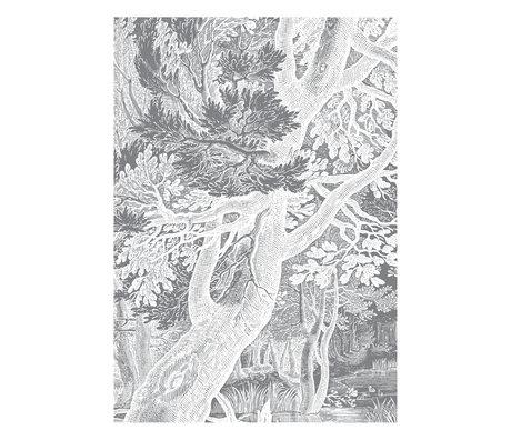 KEK Amsterdam Tapete Gravierte Landschaften Schwarz-Weiß-Vlies-Tapete 194,8x280cm (4 Blatt)