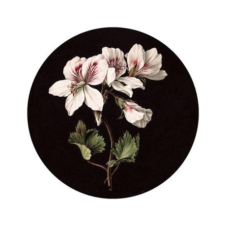 KEK Amsterdam Papier peint cercle Petites fleurs blanches Papier peint intissé multicolore Ø142.5cm