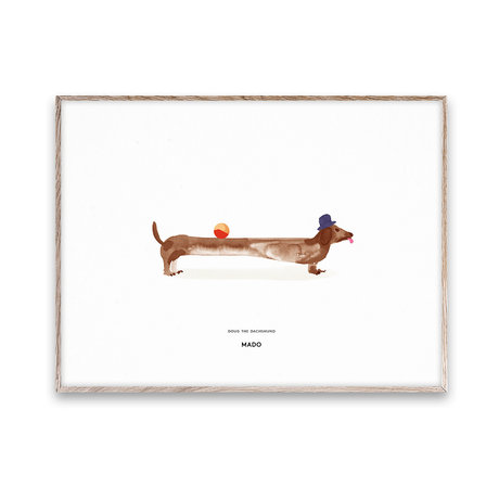 Paper Collective Poster Doug the Dachshund papier multicolore 30x40cm