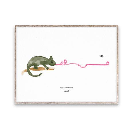 Paper Collective Poster Charlie das Chamäleon mehrfarbiges Papier 50x70cm
