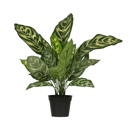 LEF collections Kunstplant Aglaonema groen kunststof 56x46x50cm