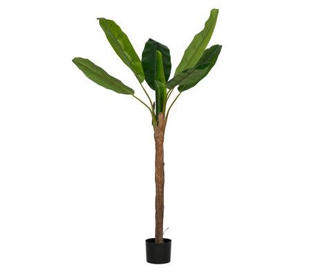 LEF collections Künstliche Pflanze Bananenpflanze grüner Kunststoff 100x100x180cm