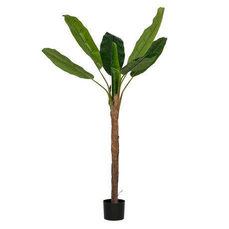 LEF collections Kunstplant Bananenplant groen kunststof 100x100x180cm