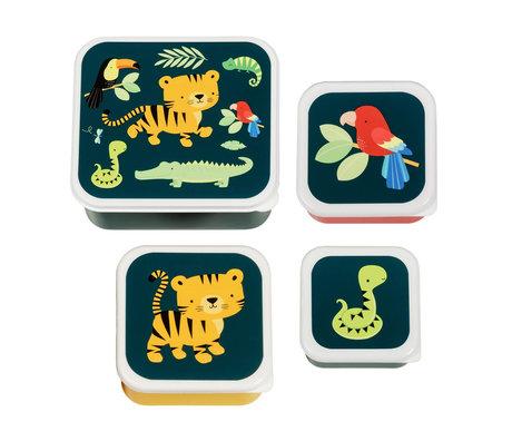 A Little Lovely Company Boîte à lunch Jungle multicolore bpa et pvc sans phtalate set de 4