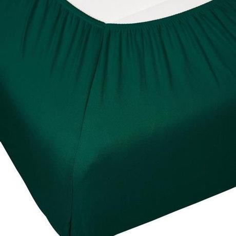ESSENZA Hoeslaken Premium Jersey Fitted Sheet Donkergroen Katoen 90/100x200/220cm