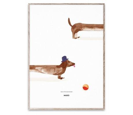 Paper Collective Poster Doug the Dachshund multicolour papier 50x70cm