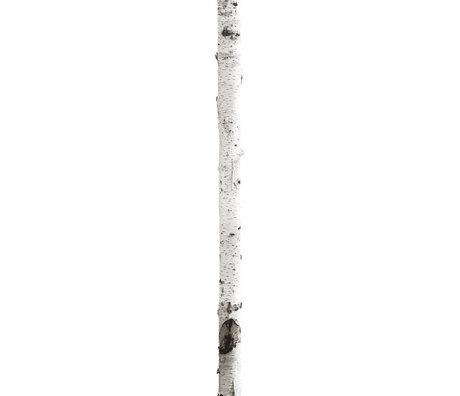 KEK Amsterdam Wandtattoo Stamm 'Home Baum 3' weiß / braun Vinyl 16x260cm
