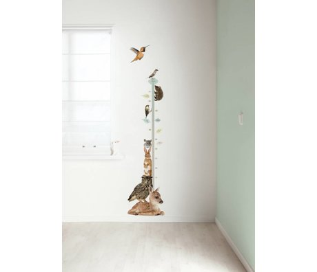 KEK Amsterdam Wandtattoo growth chart multi color 40x150cm Forest Friends Growth Chart 1 Wandfilm