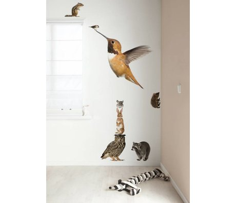 KEK Amsterdam Muursticker multicolour 57x98cm Forest Friends Set Hummingbird XL muurfolie
