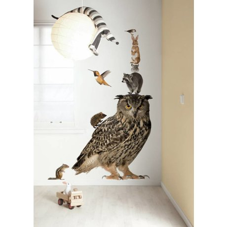 KEK Amsterdam Wall Decal multicolour 97x112cm Forest Friends Owl Set XL wall film
