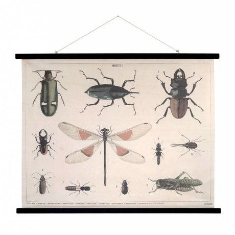 HK-living School Posters Insects printed cotton wood 105x85x2,5cm