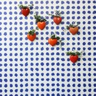 NLXL-Paola Navone Behang Blue Dots blauw 1000x48,7cm (4,9 m2)