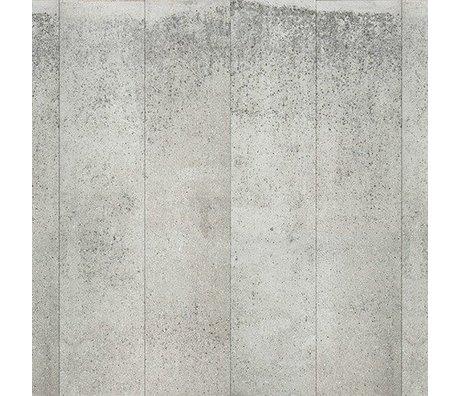 NLXL-Piet Boon Fond d'écran regard concret concrete5, gris, 9 mètres
